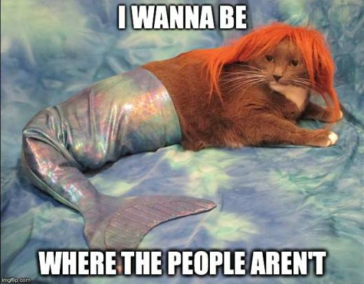 """""""I Wanna Be Where the People Aren't"""""""