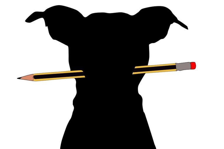 dog-with-pen